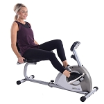Stamina Magnetic Recumbent Bike 1350