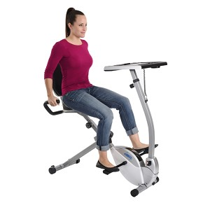 Stamina Recumbent Bike and Standing Desk